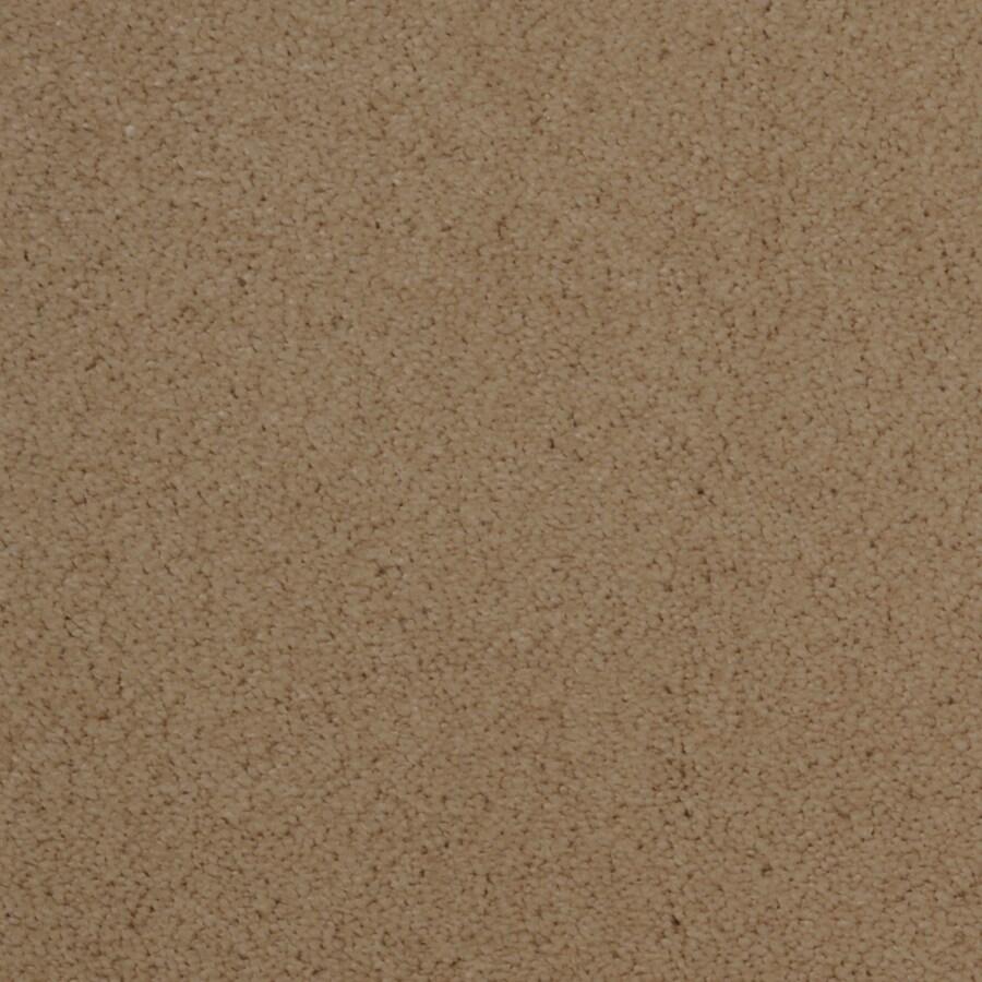STAINMASTER Vellore TruSoft Shoreline Plush Carpet Sample