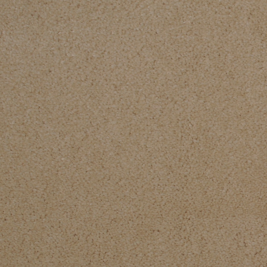 STAINMASTER TruSoft Vellore Cascade Carpet Sample