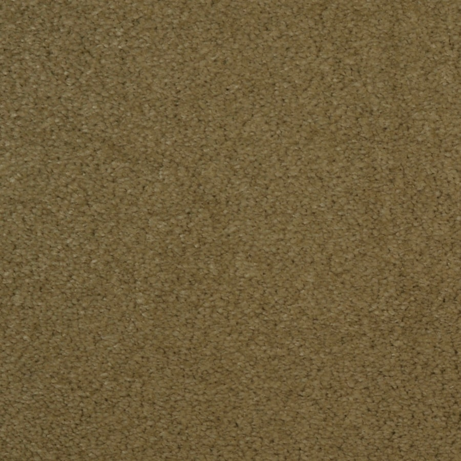 STAINMASTER Vellore TruSoft Timber Plush Carpet Sample