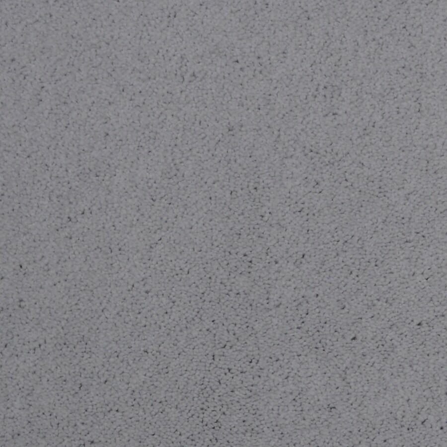 STAINMASTER Vellore Trusoft Bordeaux Plus Carpet Sample