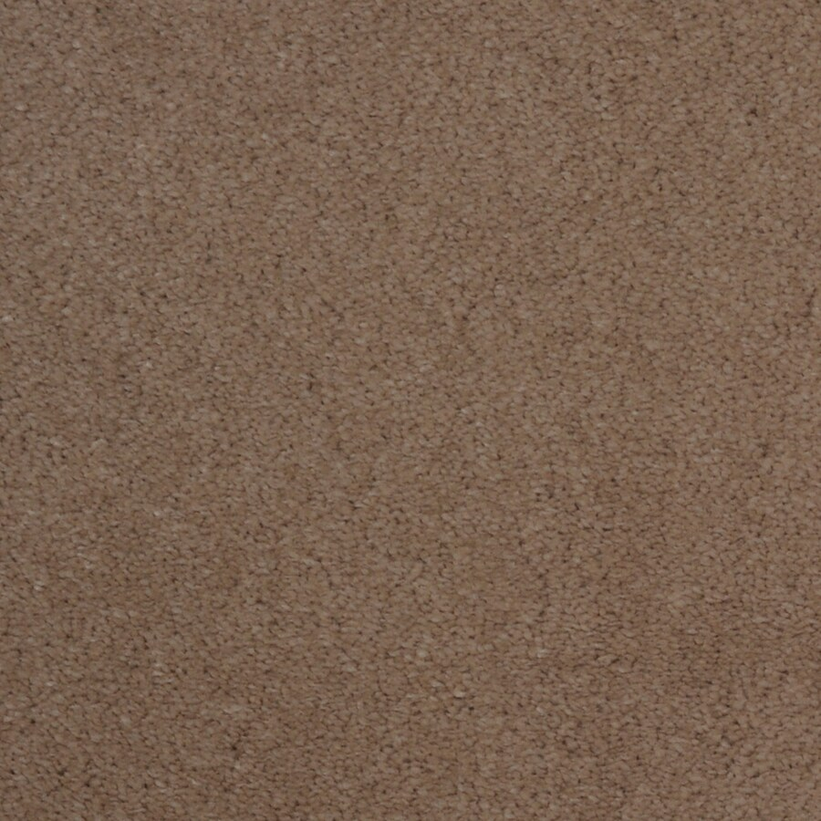 STAINMASTER TruSoft Vellore Zephyr Carpet Sample