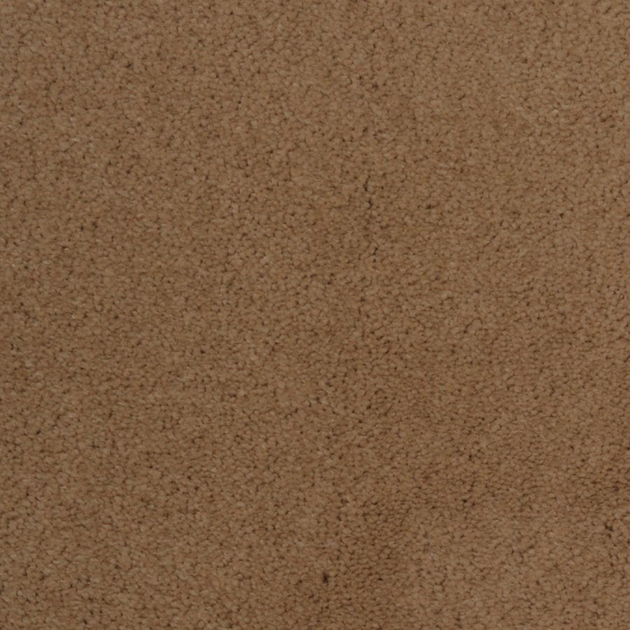 STAINMASTER TruSoft Vellore Opline Plush Carpet Sample