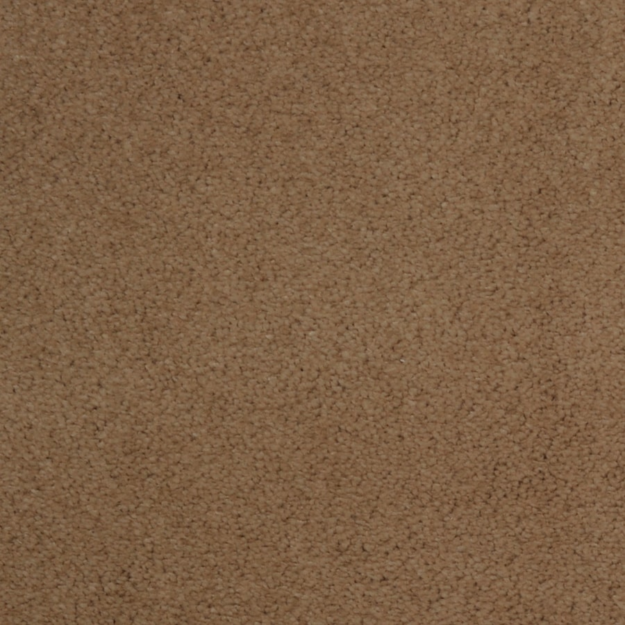 STAINMASTER Vellore Trusoft String Plus Carpet Sample