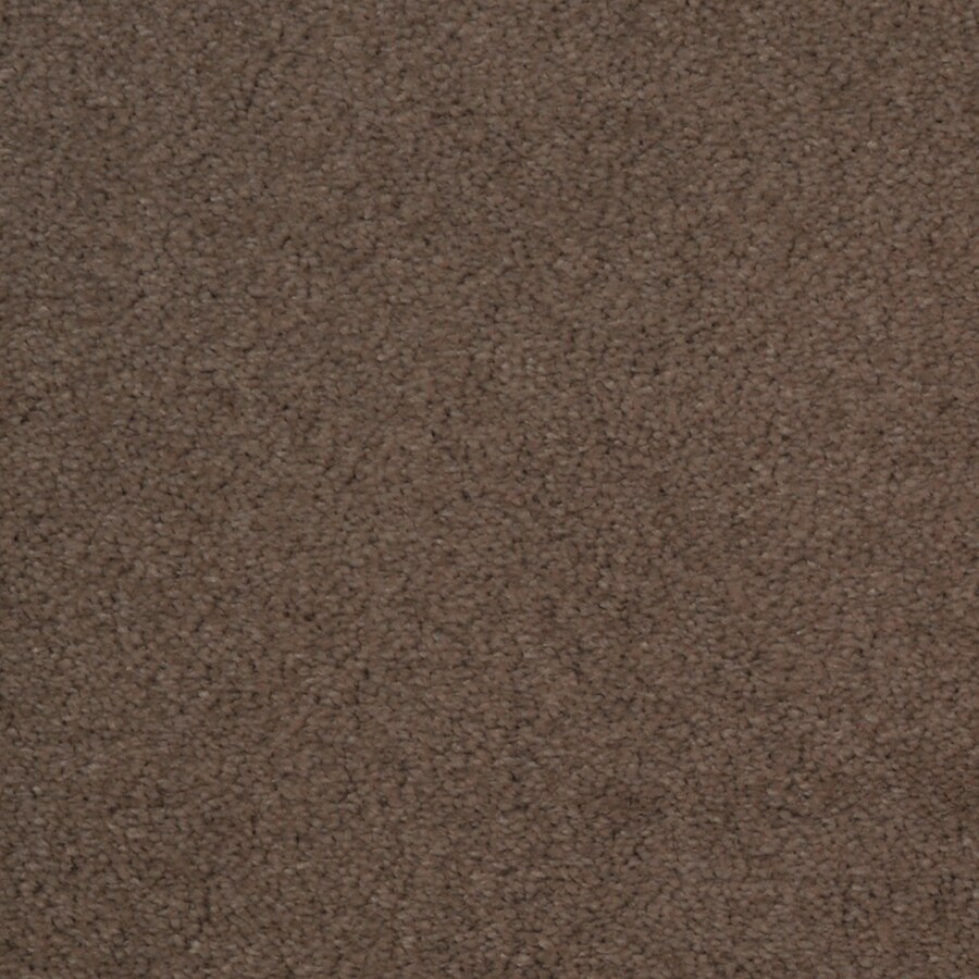 STAINMASTER Vellore TruSoft Wisper Plush Carpet Sample