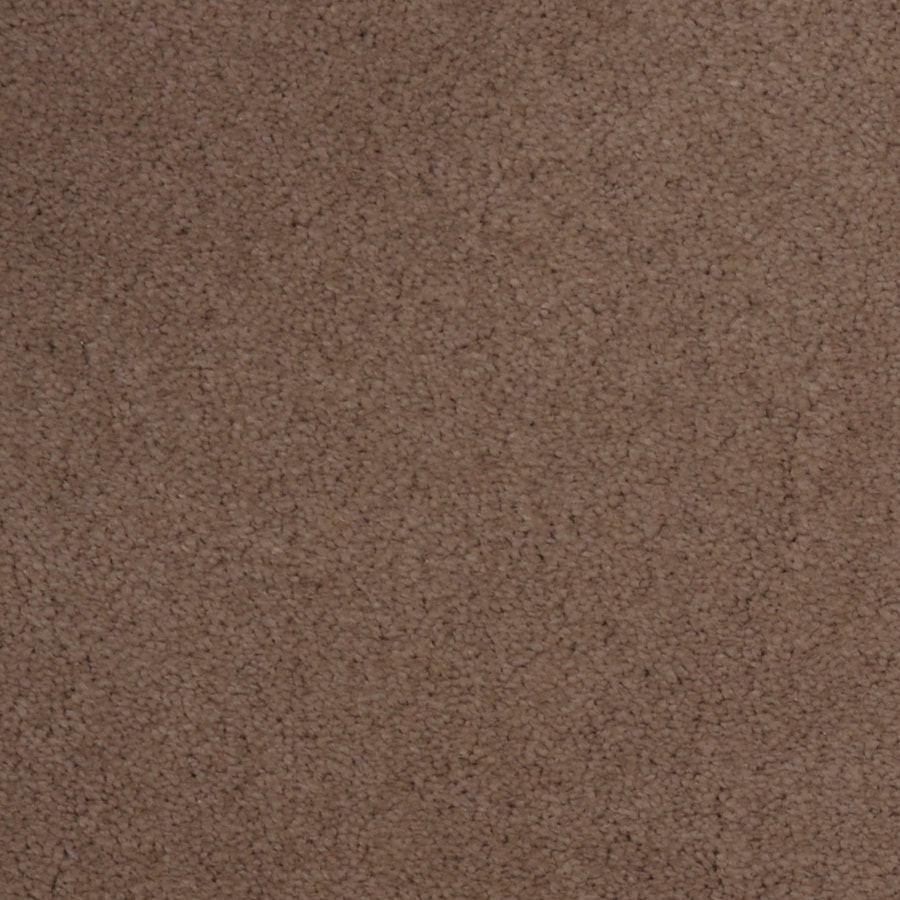 STAINMASTER Vellore TruSoft Gypsy Plush Carpet Sample
