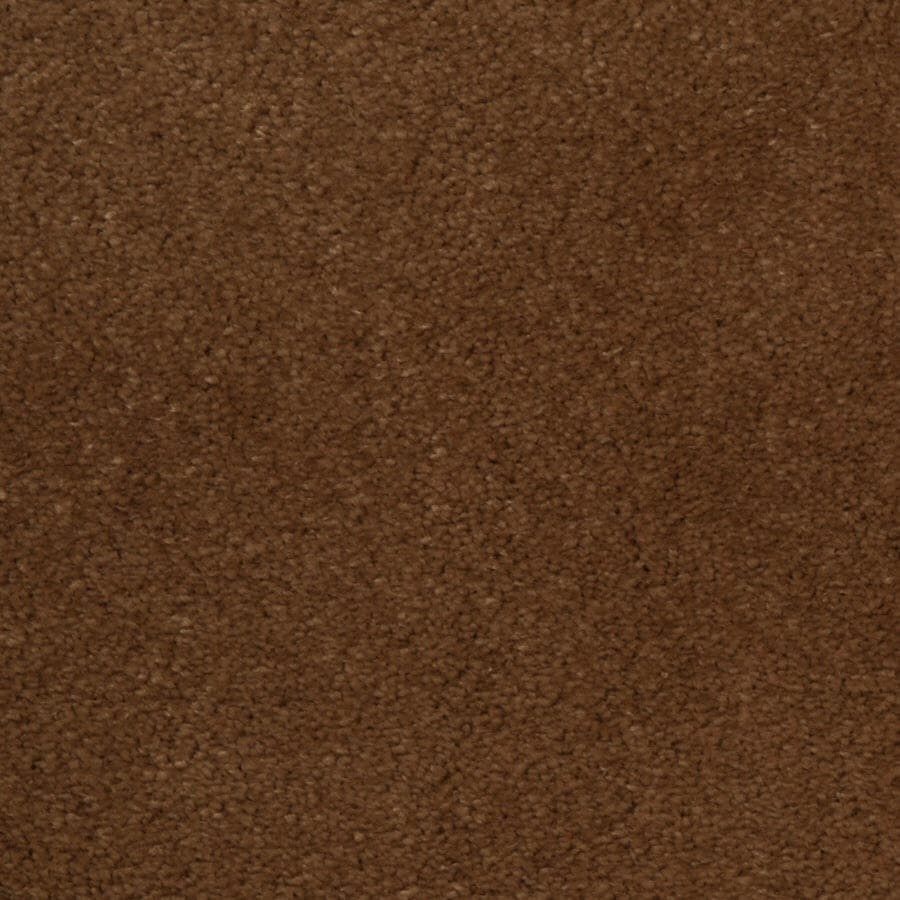 STAINMASTER TruSoft Vellore Bellflower Carpet Sample