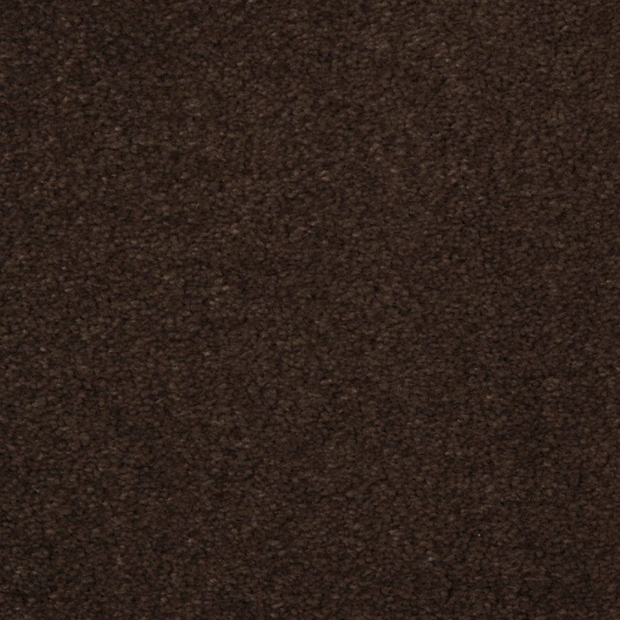 STAINMASTER TruSoft Vellore Pinata Plush Carpet Sample