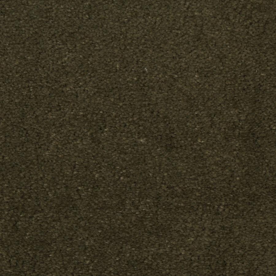 STAINMASTER TruSoft Vellore Starlight Carpet Sample