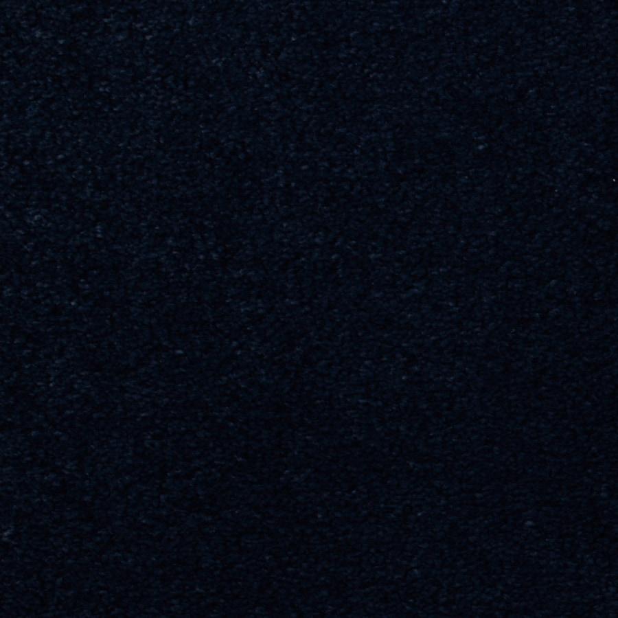 STAINMASTER Vellore Trusoft Foxglove Plus Carpet Sample