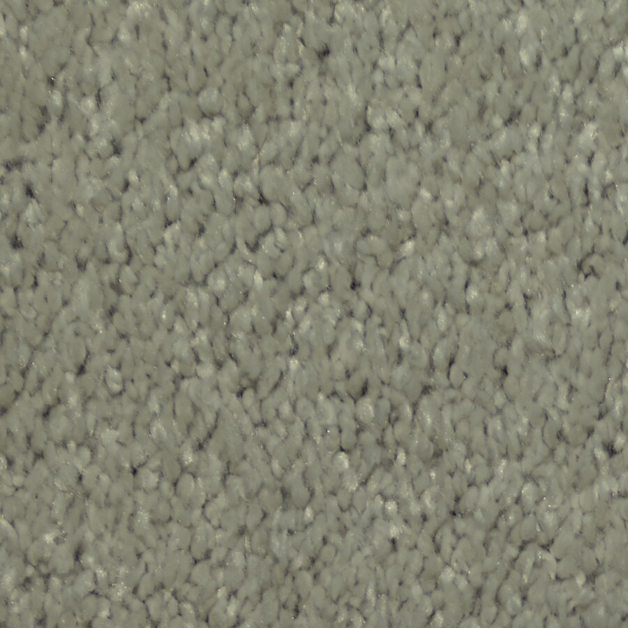 STAINMASTER Larissa Trusoft Yacht Plus Carpet Sample