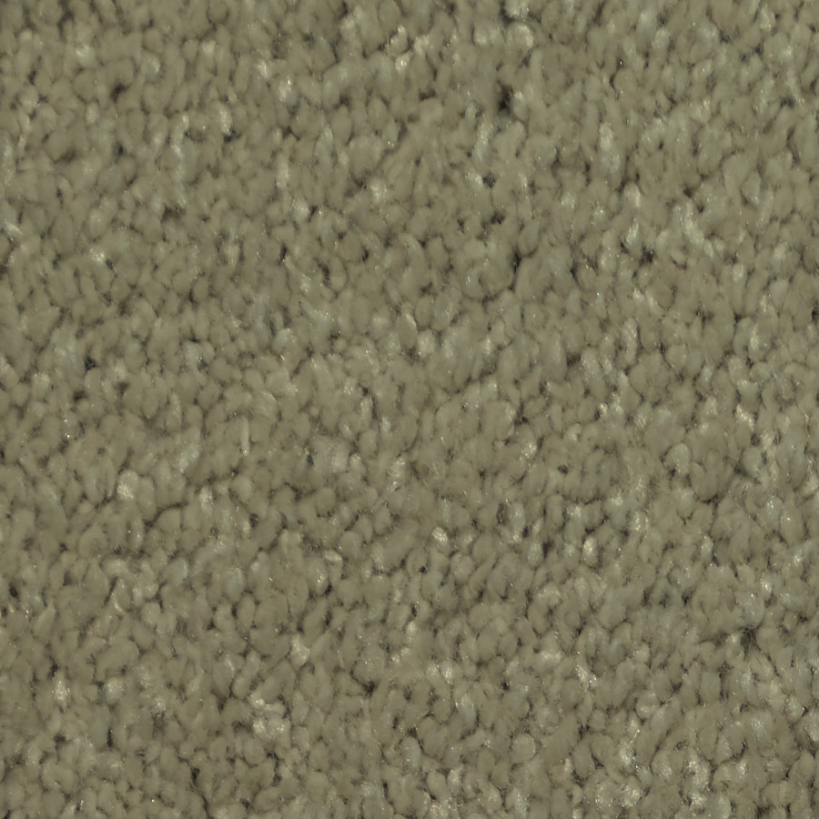 STAINMASTER TruSoft Larissa Fizz Plush Carpet Sample