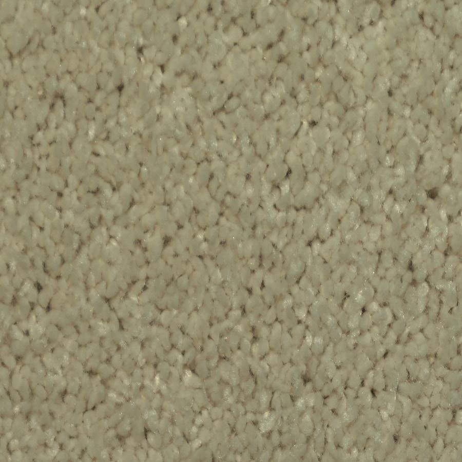 STAINMASTER Larissa TruSoft Juniper Plush Carpet Sample
