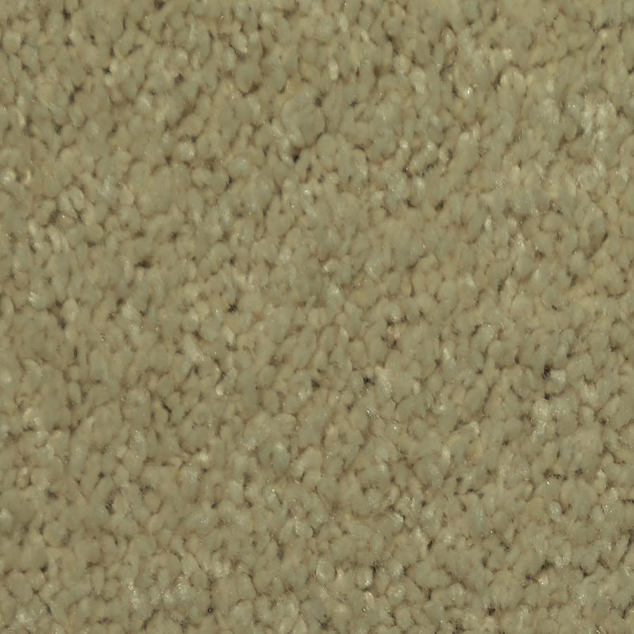 STAINMASTER Larissa TruSoft Bonnie Plush Carpet Sample