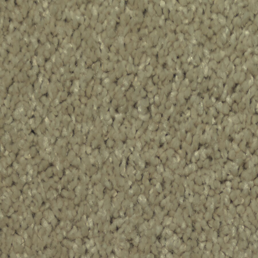 STAINMASTER TruSoft Larissa Swirl Plush Carpet Sample