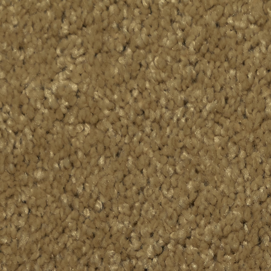 STAINMASTER TruSoft Larissa Elegant Plush Carpet Sample