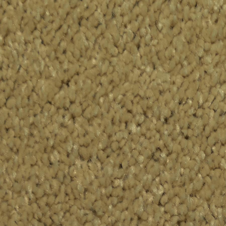 STAINMASTER Larissa Trusoft North Sea Plus Carpet Sample