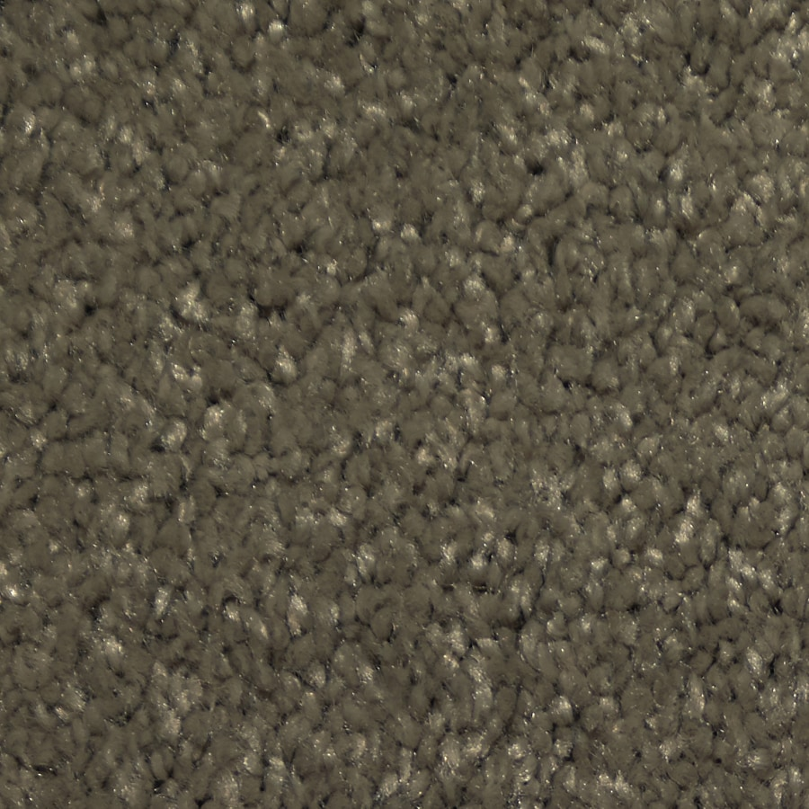 STAINMASTER TruSoft Larissa Skylight Plush Carpet Sample