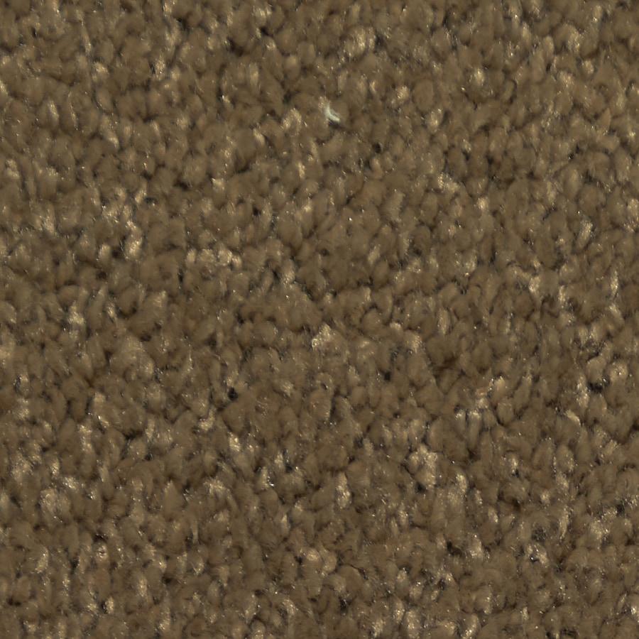 STAINMASTER Larissa Trusoft Radical Plus Carpet Sample
