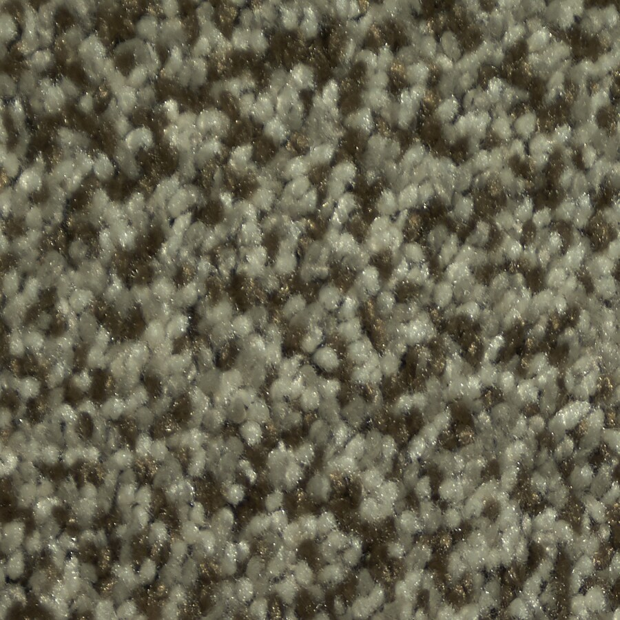 STAINMASTER TruSoft Larissa Armani Plush Carpet Sample