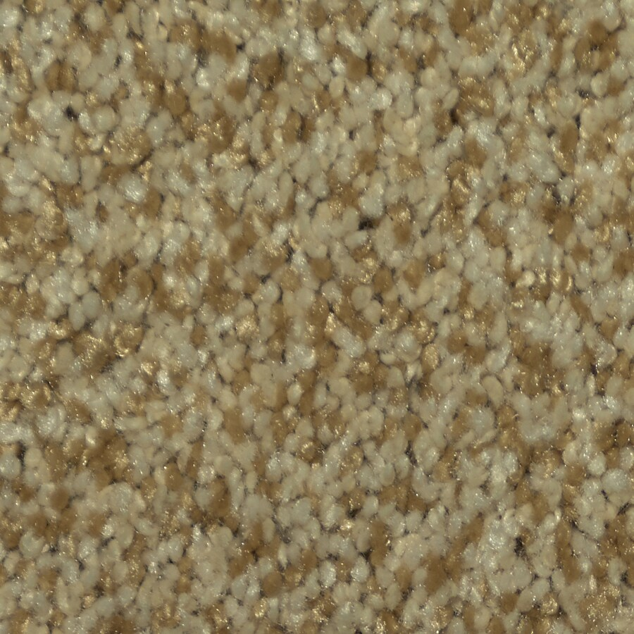 STAINMASTER Larissa TruSoft Cupid Plush Carpet Sample