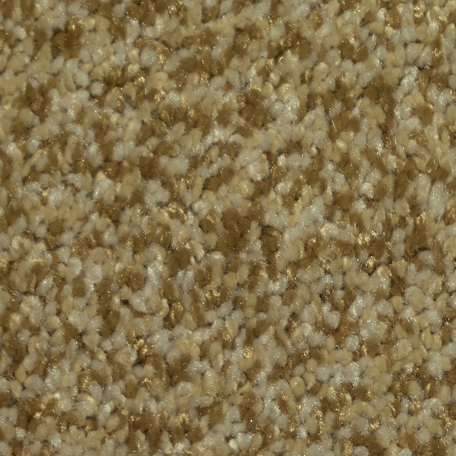Shop stainmaster trusoft larissa toledo carpet sample at - Lowes in toledo ...