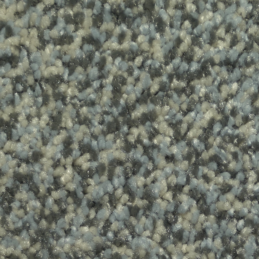 STAINMASTER Larissa TruSoft Moody Plush Carpet Sample
