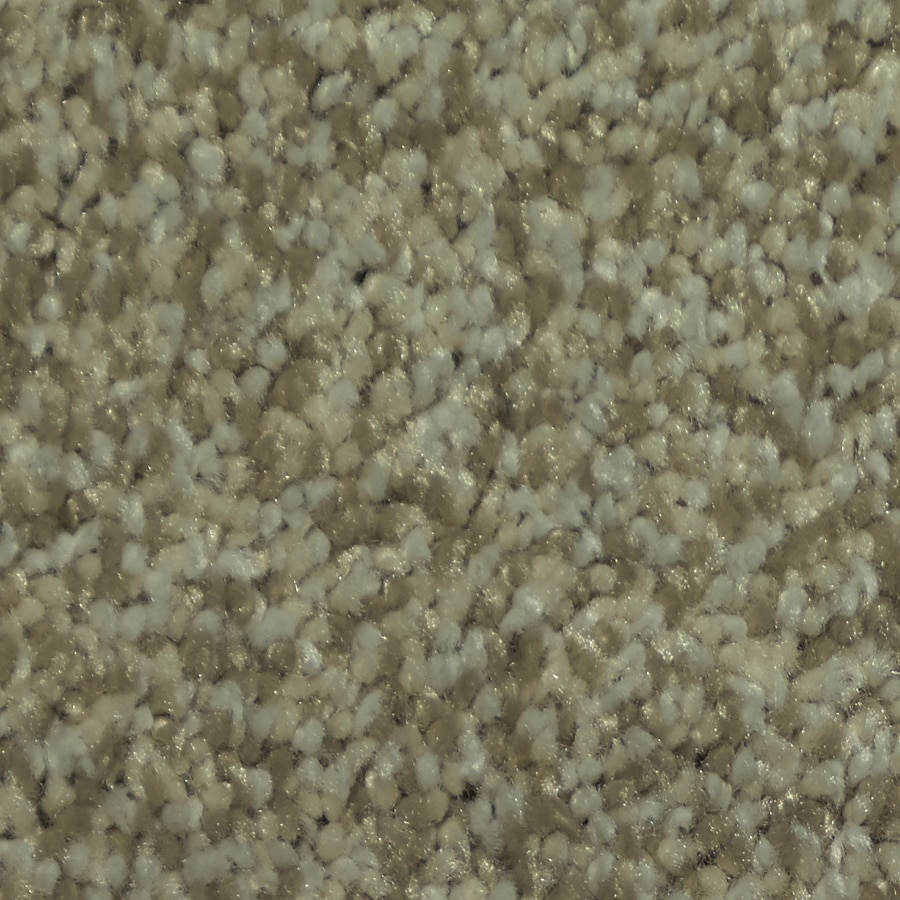 STAINMASTER Larissa TruSoft Malibu Plush Carpet Sample