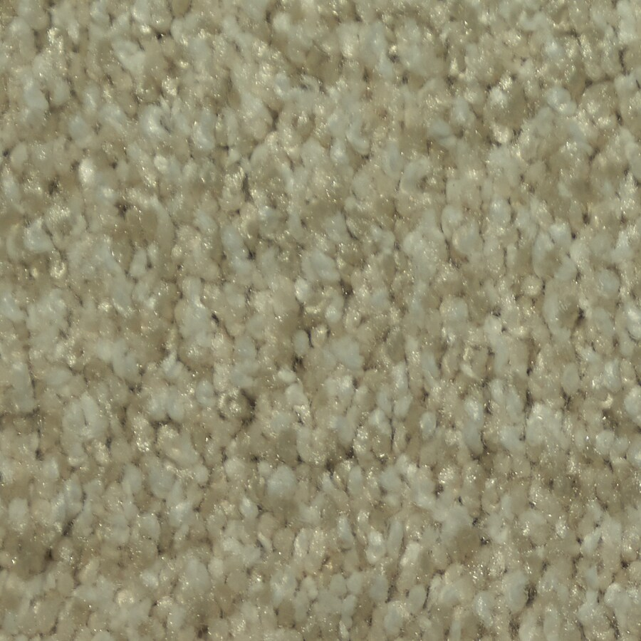 STAINMASTER Larissa Trusoft Lapis Plus Carpet Sample