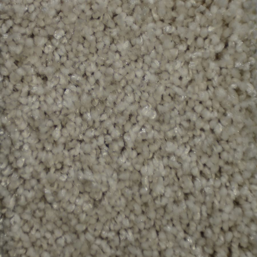 STAINMASTER TruSoft Clearman Estates Landa Plush Carpet Sample