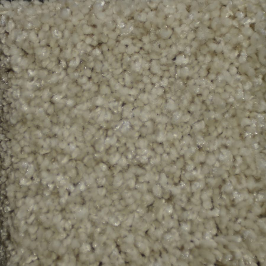 STAINMASTER TruSoft Clearman Estates Denali Carpet Sample