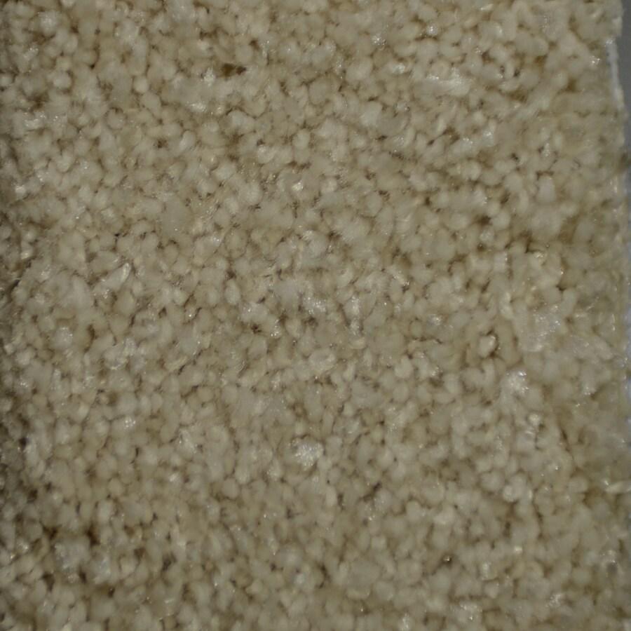 STAINMASTER TruSoft Clearman Estates Van Cott Carpet Sample