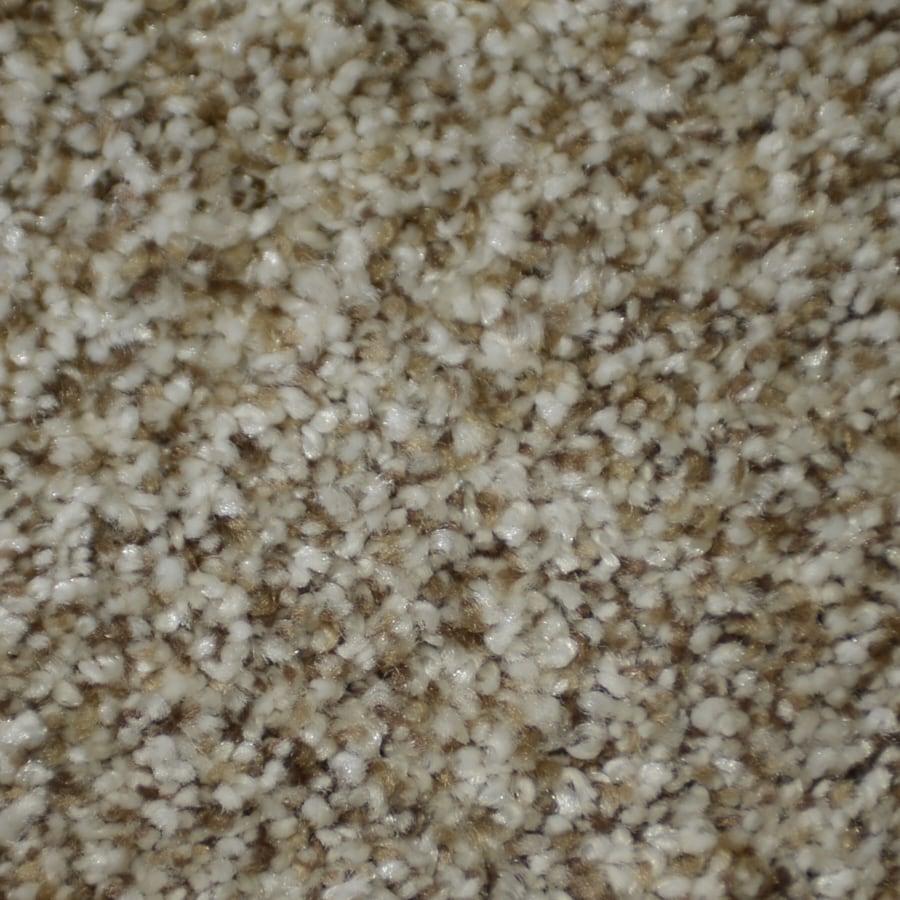 STAINMASTER Clearman Estates TruSoft Houdini Plush Carpet Sample