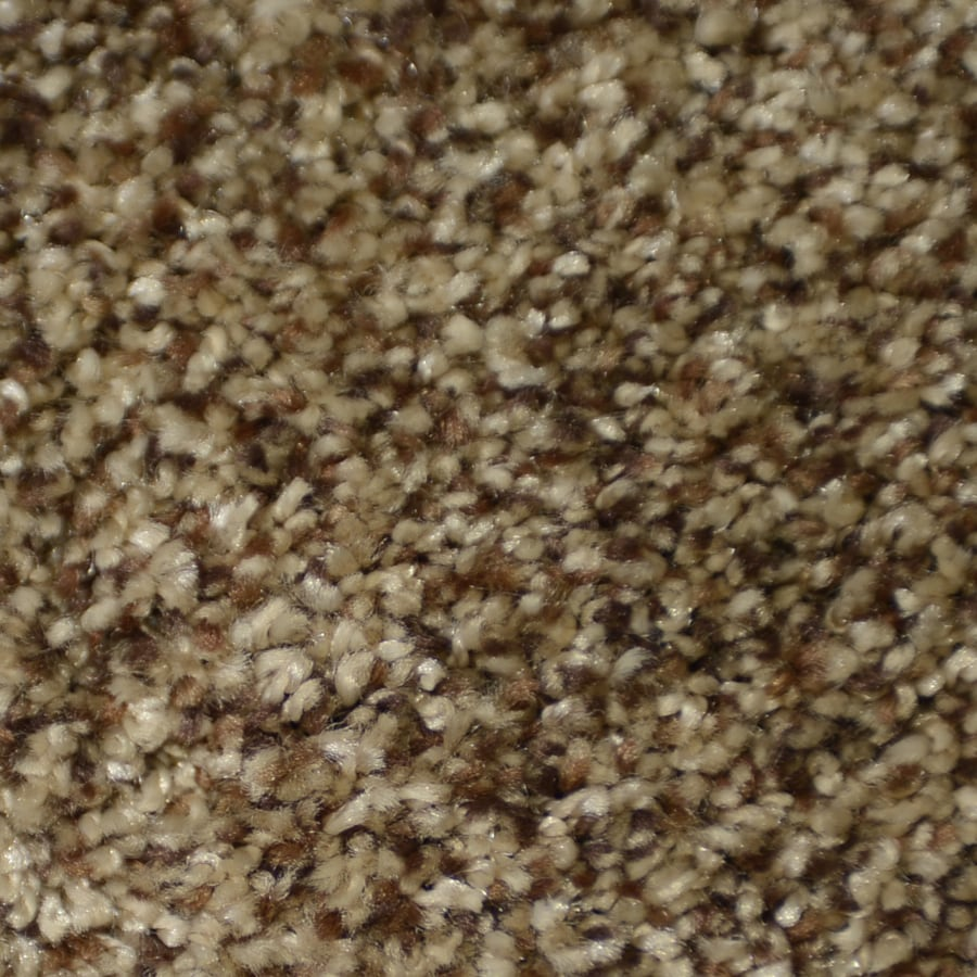 STAINMASTER Clearman Estates TruSoft Nepali Plush Carpet Sample