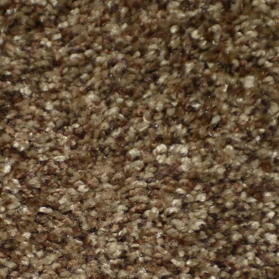 STAINMASTER Clearman Estates TruSoft Bentley Plush Carpet Sample
