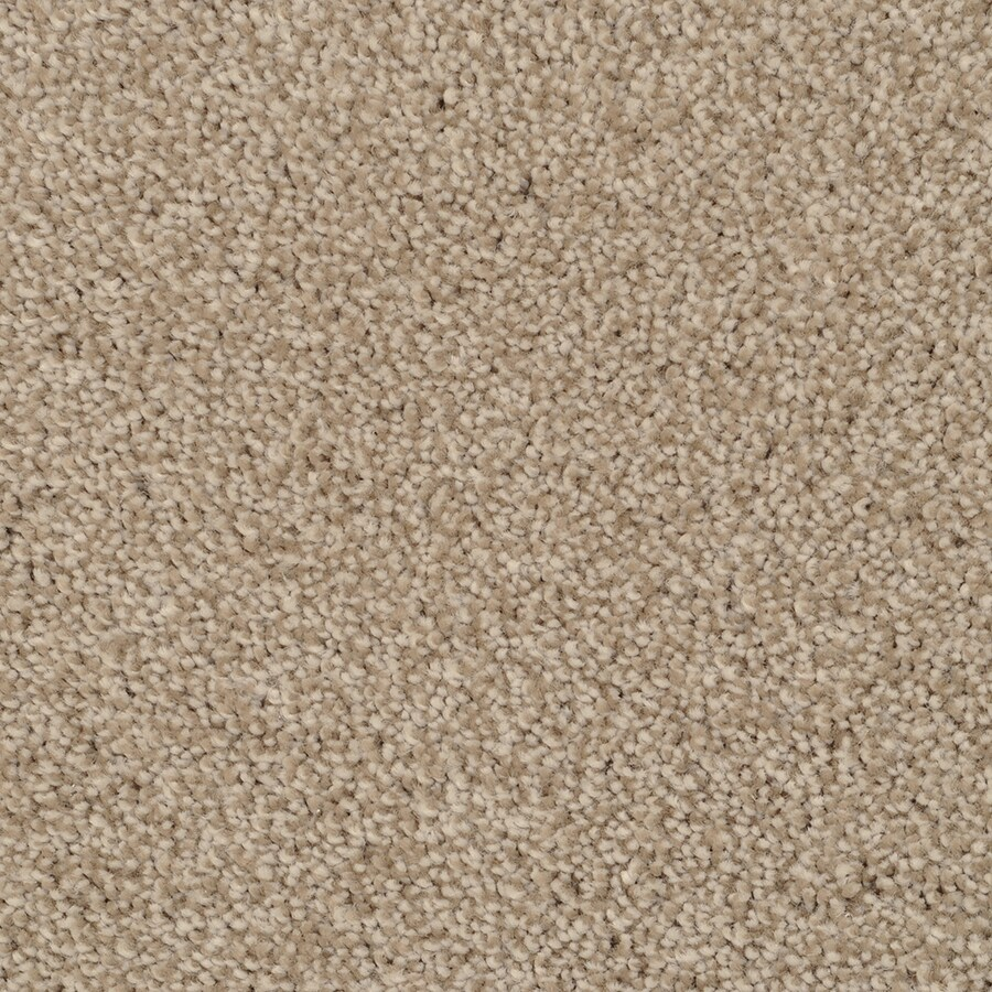 STAINMASTER TruSoft Pleasant Point Zumba Carpet Sample