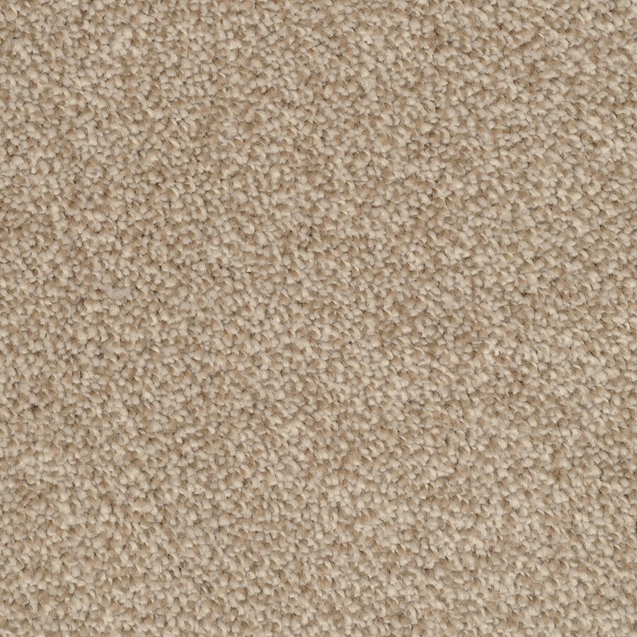 STAINMASTER Pleasant Point TruSoft Reverse Plus Carpet Sample