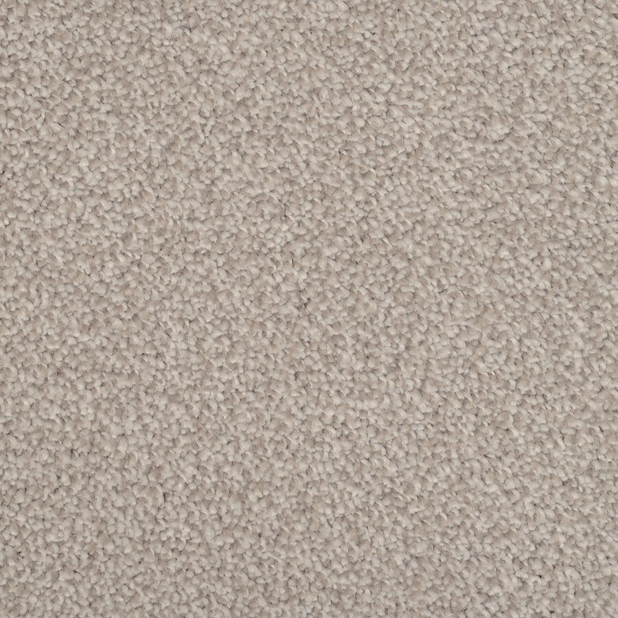 STAINMASTER TruSoft Pleasant Point Pewter Carpet Sample