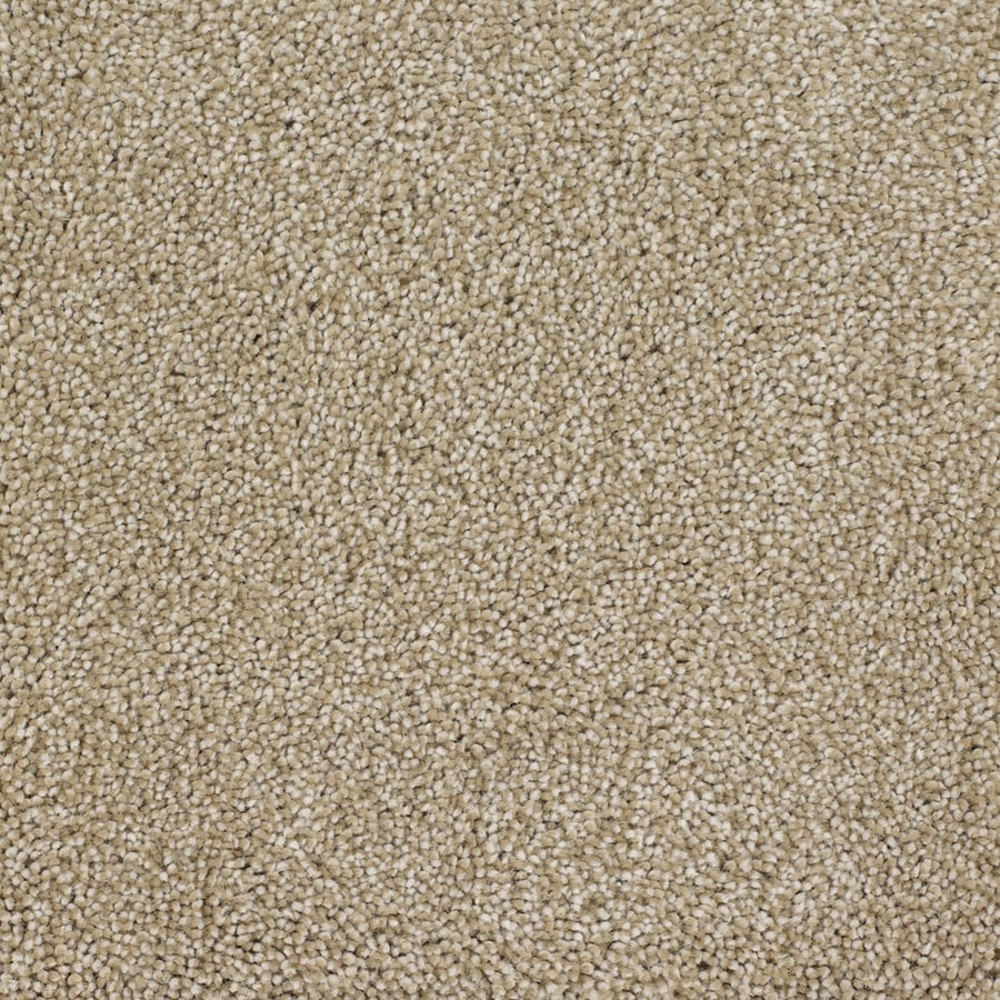 STAINMASTER TruSoft Pleasant Point Avalon Carpet Sample