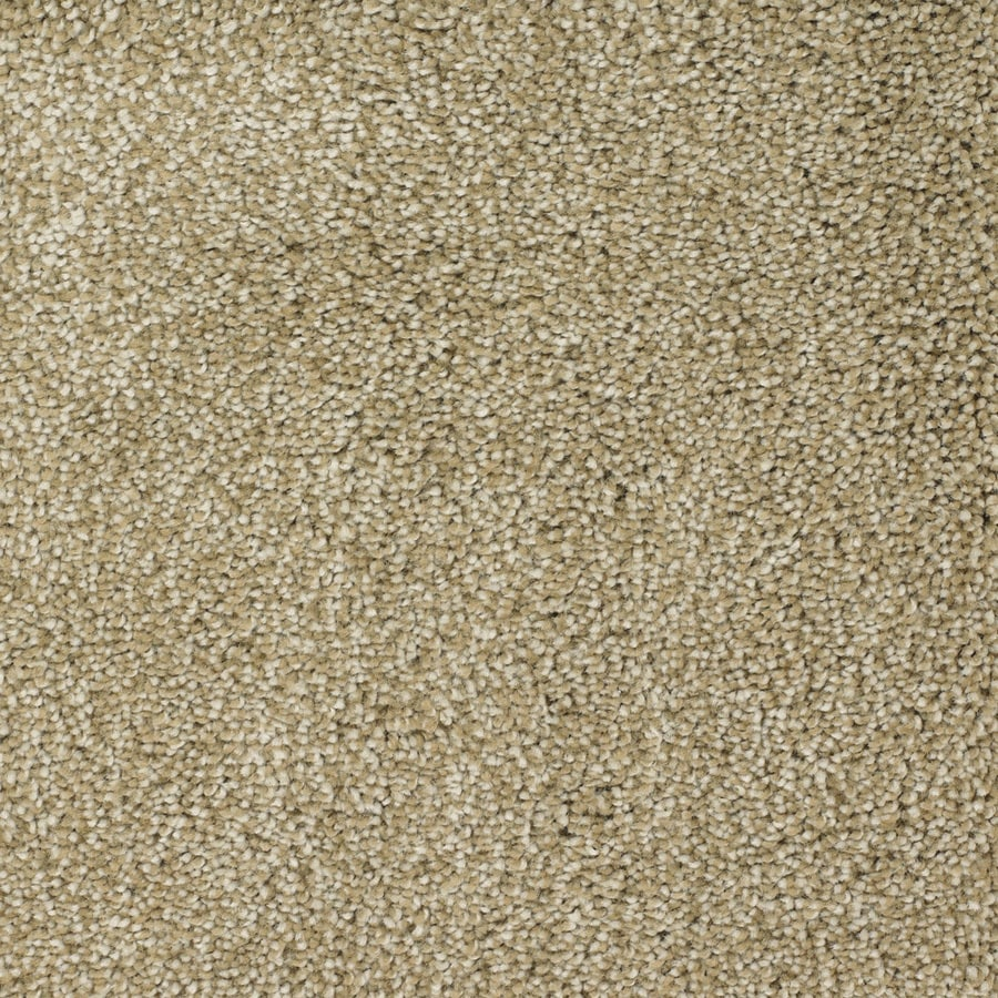 STAINMASTER Pleasant Point TruSoft Weathered Plus Carpet Sample