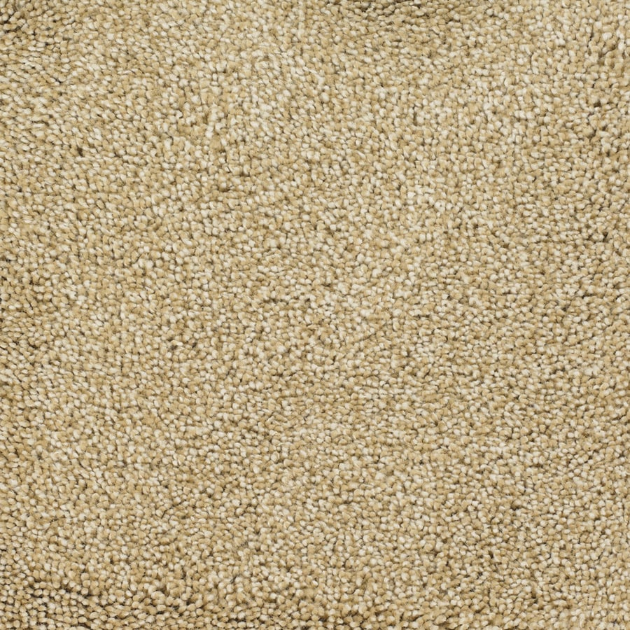STAINMASTER Pleasant Point TruSoft Horseshoe Plus Carpet Sample