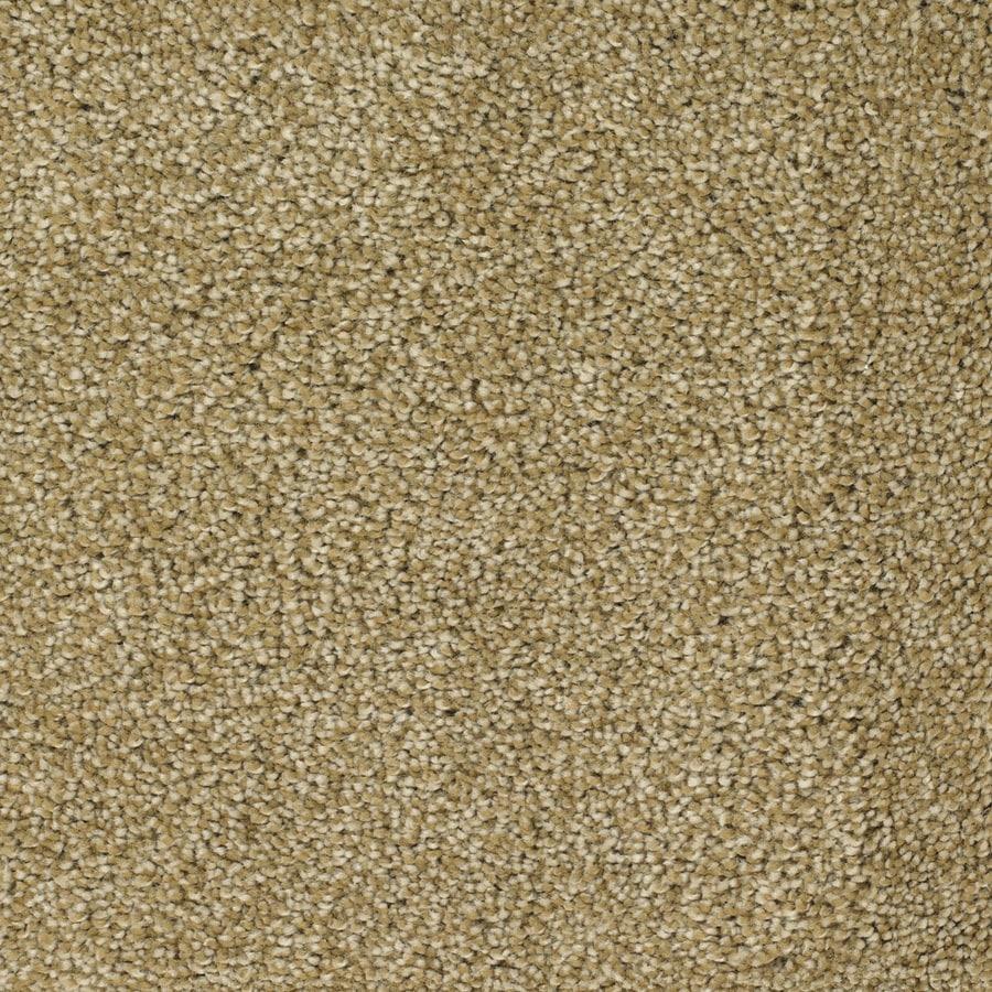 STAINMASTER TruSoft Pleasant Point Nostalgia Plush Carpet Sample