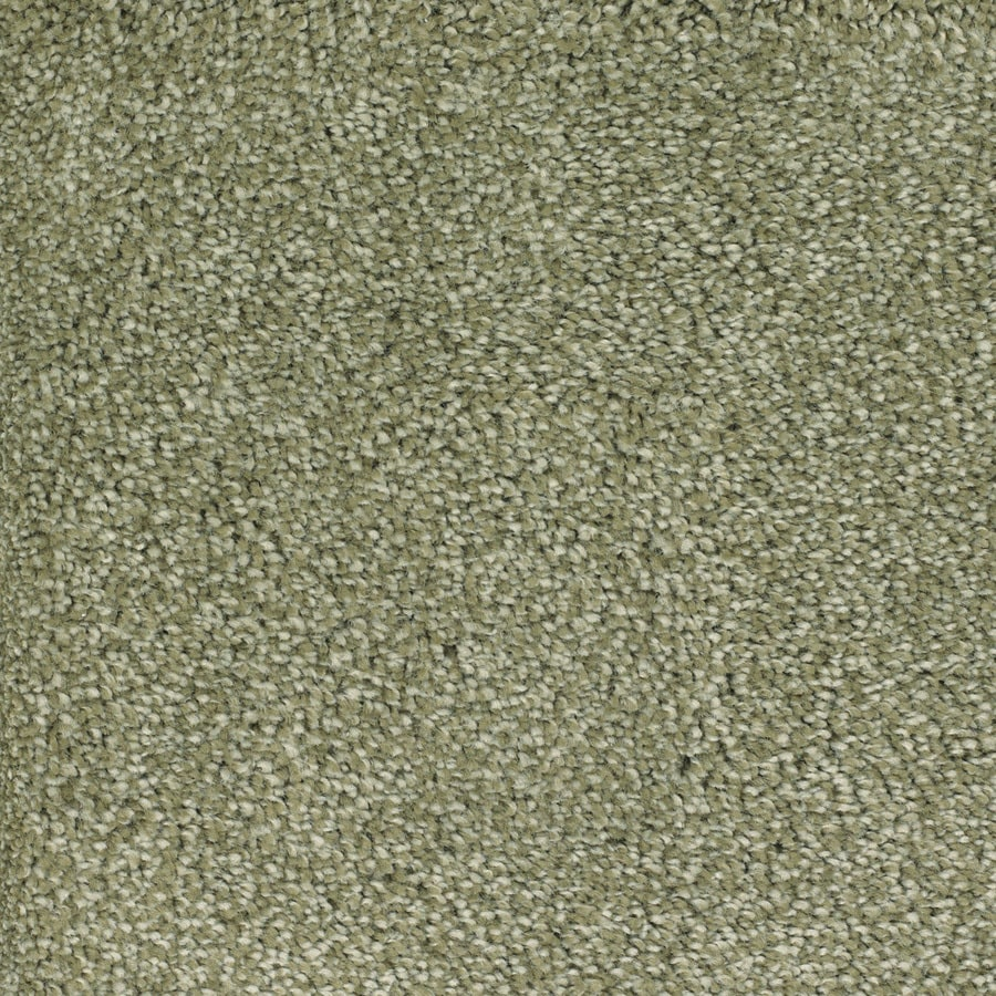 STAINMASTER Pleasant Point TruSoft Wild Rice Plus Carpet Sample