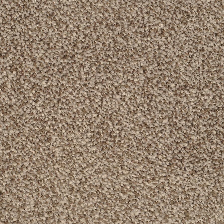 STAINMASTER Briar Patch TruSoft Pebbled Shore Plus Carpet Sample