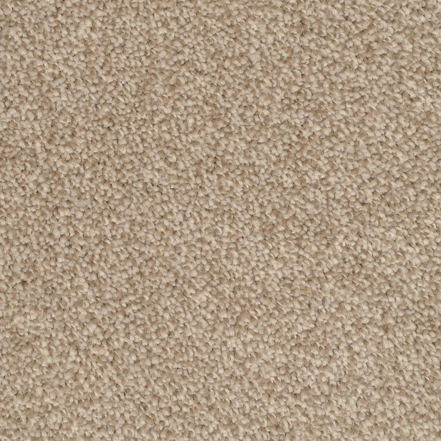 STAINMASTER TruSoft Briar Patch Reverse Plush Carpet Sample