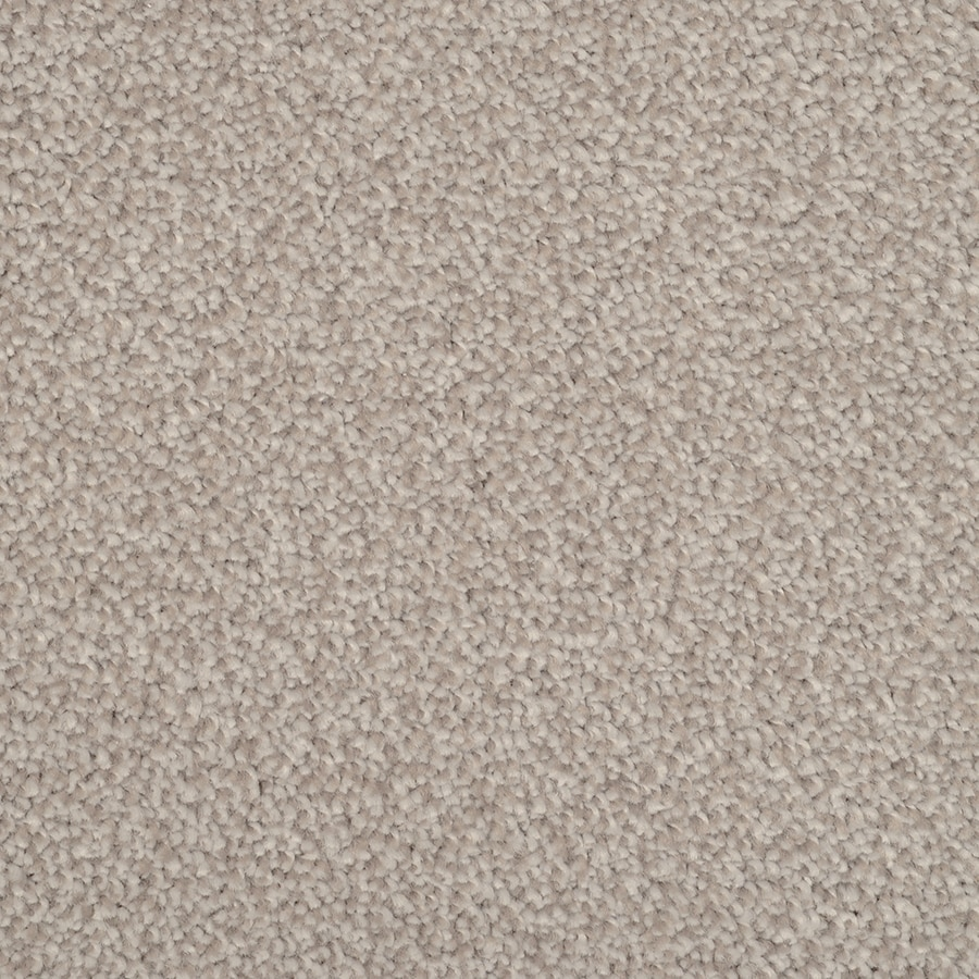 STAINMASTER TruSoft Briar Patch Pewter Plush Carpet Sample