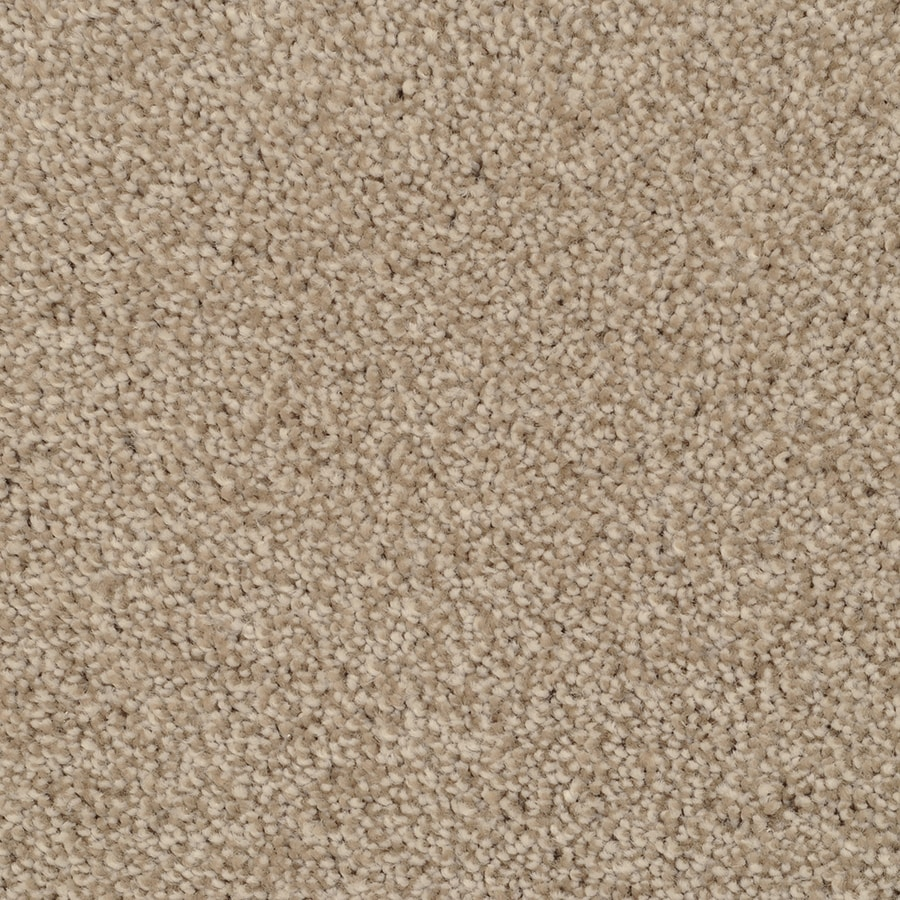 STAINMASTER Shafer Valley TruSoft Zumba Plush Carpet Sample