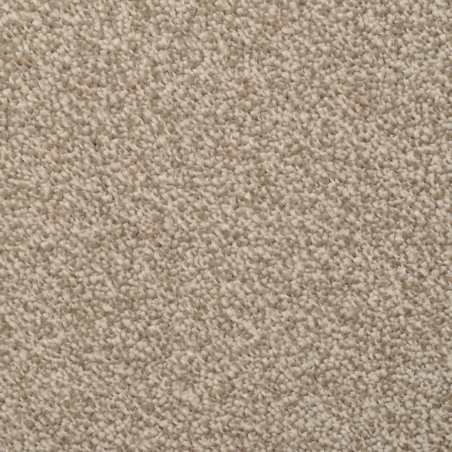 STAINMASTER TruSoft Shafer Valley Granada Carpet Sample