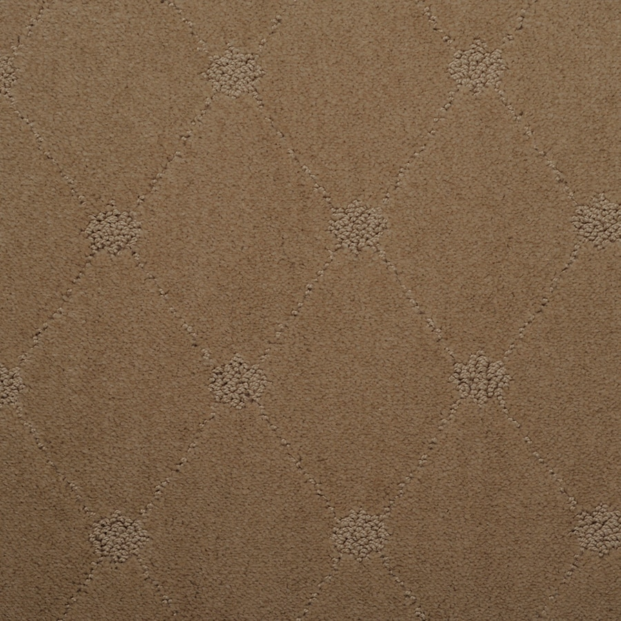 STAINMASTER TruSoft Hunts Corner Harmony Berber/Loop Carpet Sample