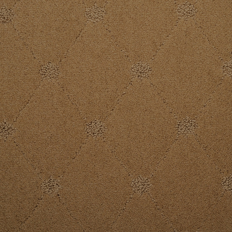 STAINMASTER TruSoft Hunts Corner Meadow Carpet Sample