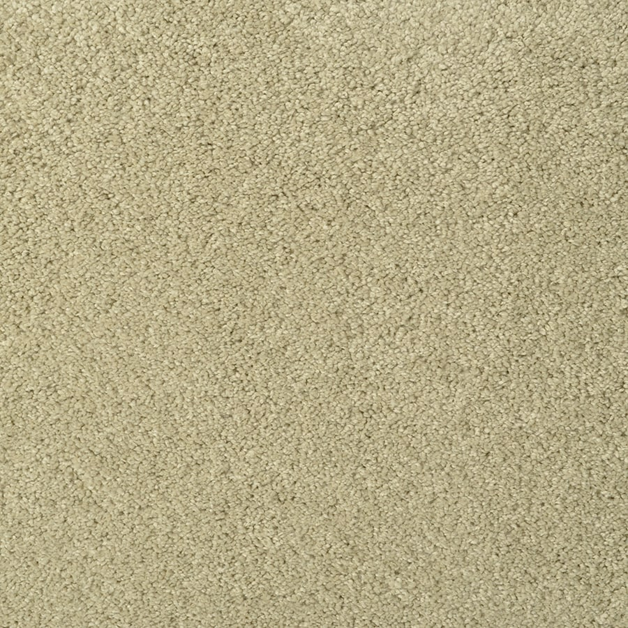 STAINMASTER TruSoft Best Of Class Ripe Gourd Berber/Loop Carpet Sample